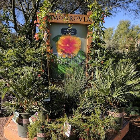 Tucson Garden Center